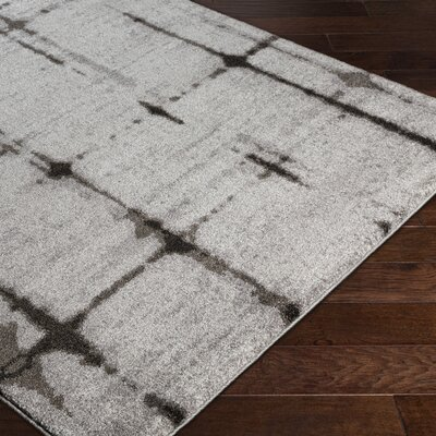 Danny Gray Area Rug Rug Size: Rectangle 5'3