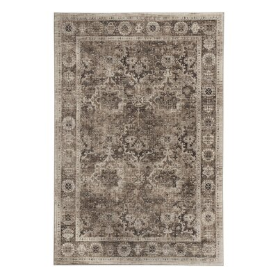 Anthea Brown Area Rug Rug Size: 5 x 7