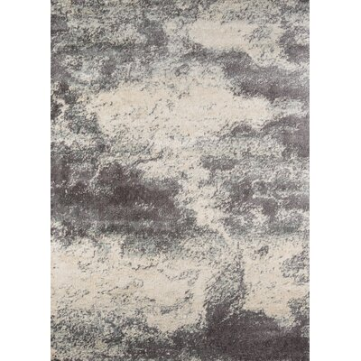 Augustus Gray/Ivory Area Rug Rug Size: 311 x 57