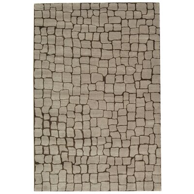Aliza Hand-Tufted Silver/Gray Area Rug Rug Size: Rectangle 5 x 8