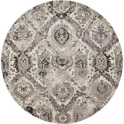 Arabelle Ivory/Gray Area Rug Rug Size: Round 8