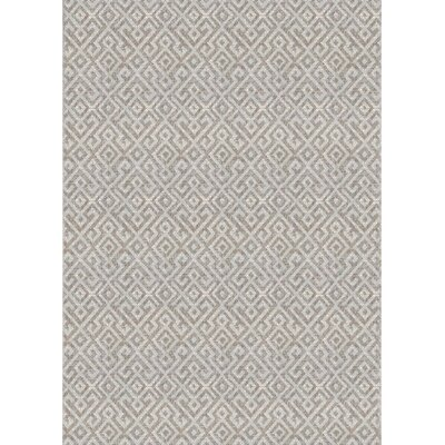 Waller Gray Indoor/Outdoor Area Rug Rug Size: 53 x 76