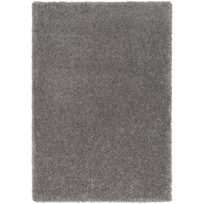 Red Hills Solid Gray Area Rug Rug Size: 53 x 73