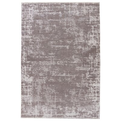 Cayeman Moon Beam/Flint Gray Area Rug Rug Size: 53 x 76