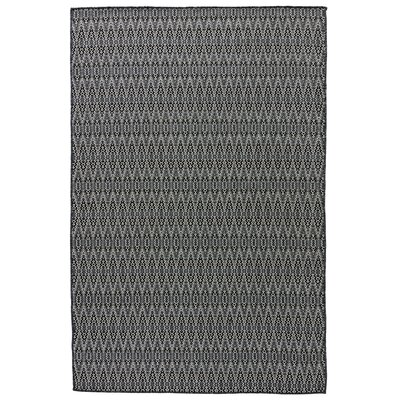 Wooten Charcoal Gray Indoor/Outdoor Area Rug Rug Size: 2 x 3