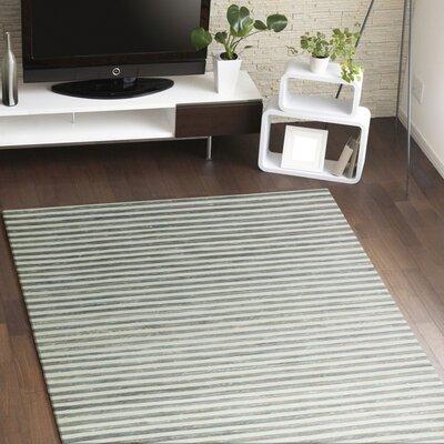 Braflin Hand-Woven Grey Area Rug Rug Size: 59 x 89