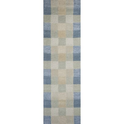 Heidi Seaside Checkerboard Area Rug Rug Size: Runner 23 x 76