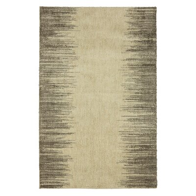 Allegra Gray Area Rug Rug Size: Rectangle 5 x 7