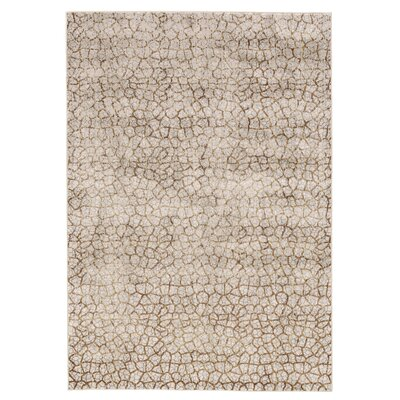 Jasmine Gray/Brown Area Rug Rug Size: Round 8