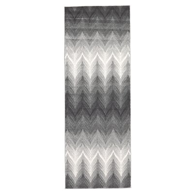 Hyannis Ash/White Area Rug Rug Size: Runner 210 x 710