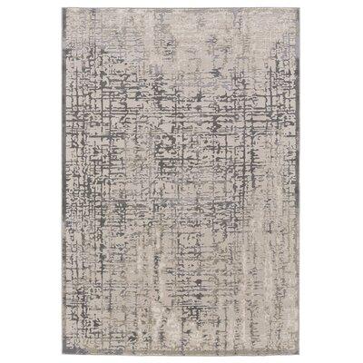 Anya Gray/Beige Area Rug Rug Size: Rectangle 8 x 11