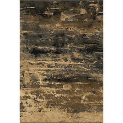 Halewood Sunset Beige/Gray Area Rug Rug Size: 5'3