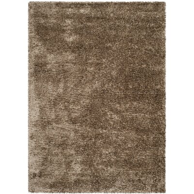 Adaline Caramel Outdoor Area Rug Rug Size: Rectangle 27 x 47
