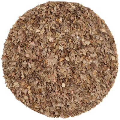 Carrol Brown Area Rug Rug Size: Round 4