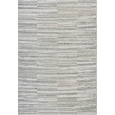 Napa Gray Indoor/Outdoor Area Rug Rug Size: 53 x 76
