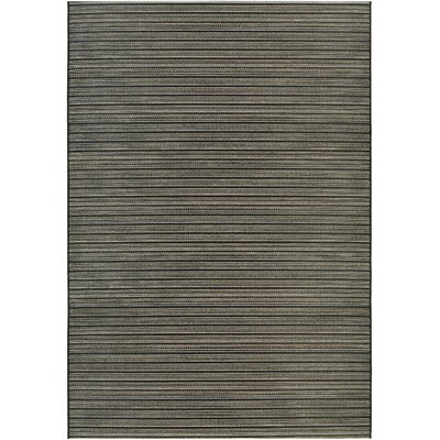 Napa Black/Tan Indoor/Outdoor Area Rug Rug Size: Rectangle 2 x 37