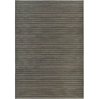 Napa Black/Tan Indoor/Outdoor Area Rug Rug Size: Runner 23 x 71