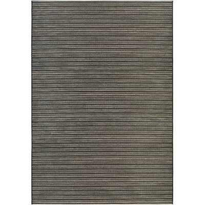 Napa Black/Tan Indoor/Outdoor Area Rug Rug Size: Rectangle 311 x 56