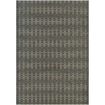 Napa Brown/Gray Indoor/Outdoor Area Rug Rug Size: Runner 23 x 710
