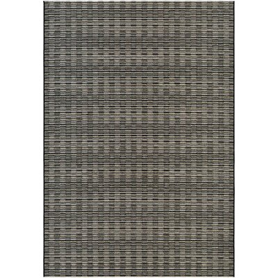 Napa Brown/Gray Indoor/Outdoor Area Rug Rug Size: 311 x 56