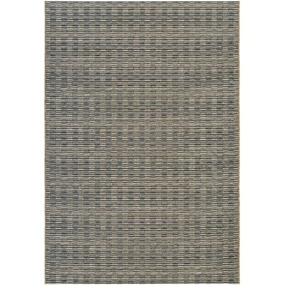 Napa Black Indoor/Outdoor Area Rug Rug Size: Rectangle 66 x 96