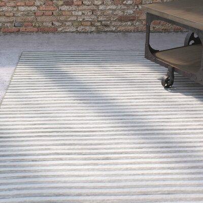 Braflin Hand-Woven Grey Area Rug Rug Size: 5 x 7