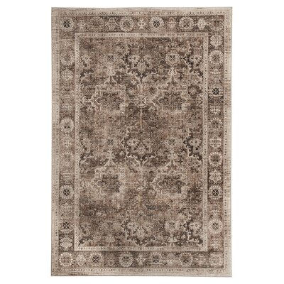 Anthea Brown Area Rug Rug Size: 8 x 10