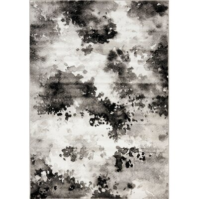 Ashly White/Gray Area Rug Rug Size: 53 x 77