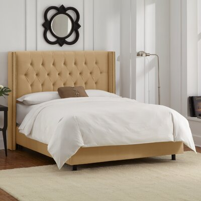Allbright Upholstered Panel Bed Upholstery: Velvet Honey, Size: Queen