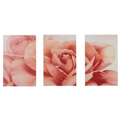 Robelmont Pretty Fresh Rose Flower Triptych 3 Piece Photographic Pint on Wood Set