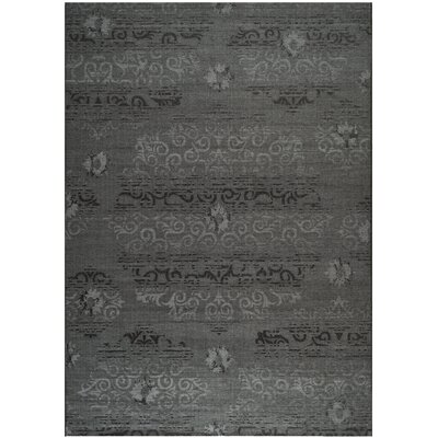 Chipping Ongar Black/Grey Area Rug Rug Size: 8 x 11