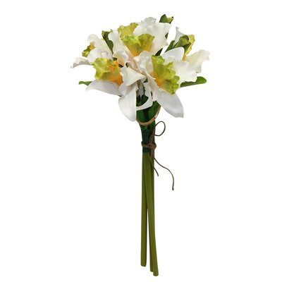 Orchid Bouquet Color: White / Green