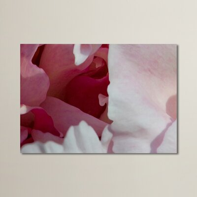 Peony Diptych Photographic Print Size: 11