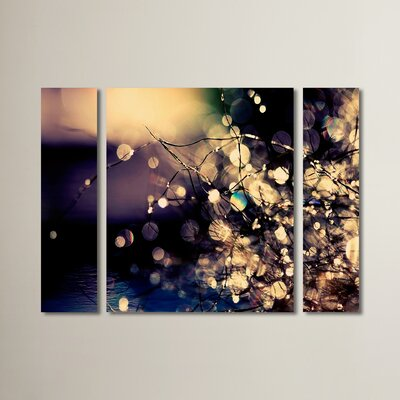 'Fairies in My Garden' by Beata Czyzowska Young 3 Piece Photographic Print on Wrapped Canvas Set