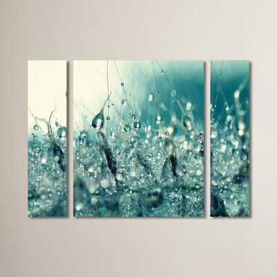 'Under the Sea' by Beata Czyzowska Young 3 Piece Photographic Print on Wrapped Canvas Set