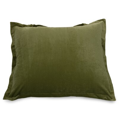 Edwards Floor Pillow Color: Fern