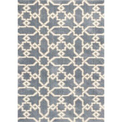 Carolos Slate Blue Area Rug Rug Size: 33 x 53