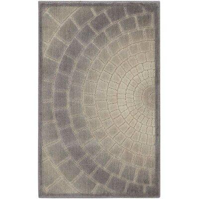 Cadmium Light Gray Area Rug Rug Size: Rectangle 26 x 4