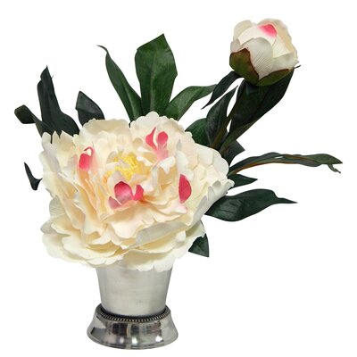 Peony Blossom in Mint Julep Cup Color: Cream