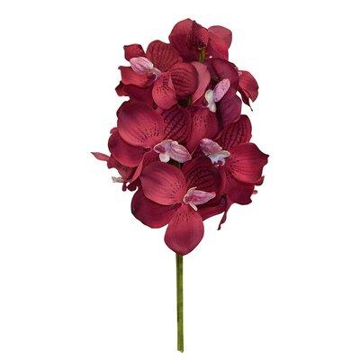 Orchid Bouquet Flower Color: Burgundy
