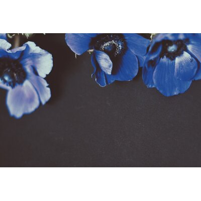 Triplets by Morgan Kendall Photographic Print on Wrapped Canvas Size: 12