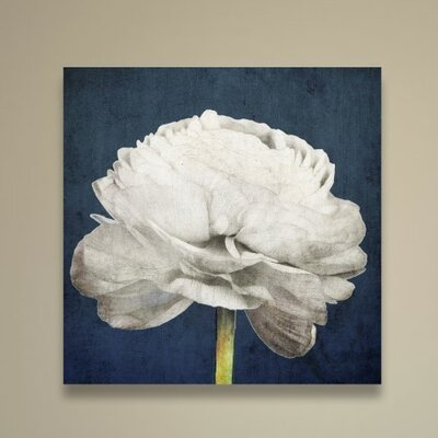 Pretty View Painting Print on Wrapped Canvas Size: 16