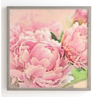 'Pink Peonies' by Lisa Argyropoulos Framed Graphic Art Size: 12