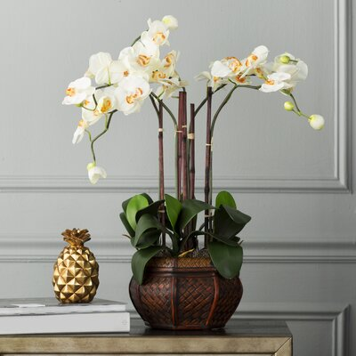 Lorelei Phalaenopsis Silk Flower Arrangement in Decorative Vase