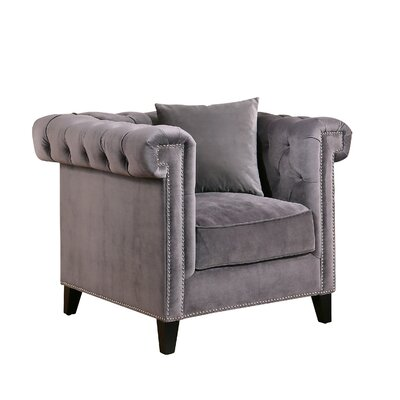 Zirconia Velvet Armchair Color: Gray