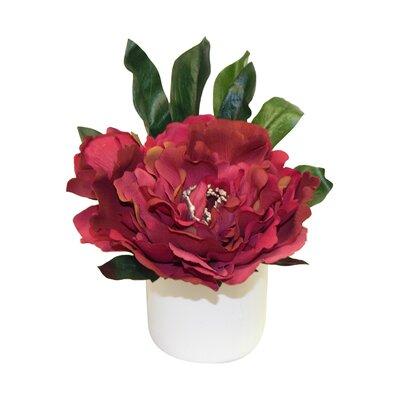 Peony Arrangement Flower Color: Burgandy