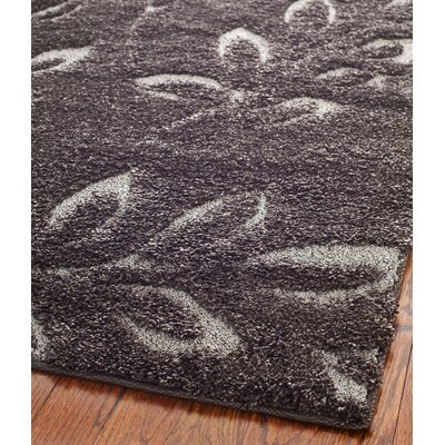 Duffey Dark Brown Area Rug Rug Size: 53 x 76