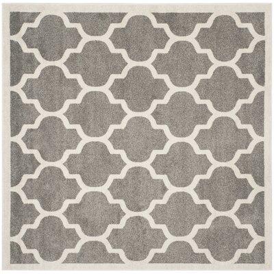 Maritza Trellis Dark Grey/Beige Area Rug Rug Size: Square 7