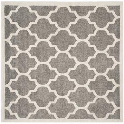 Maritza Trellis Dark Grey/Beige Area Rug Rug Size: Square 5
