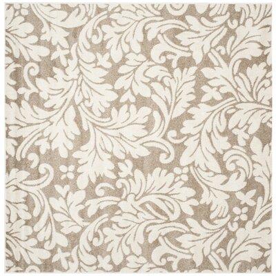 Maritza Floral Dark Grey/Beige Area Rug Rug Size: Square 9